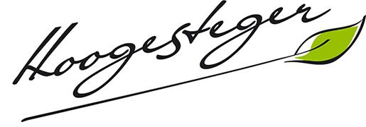 CSR report Hoogesteger 2020